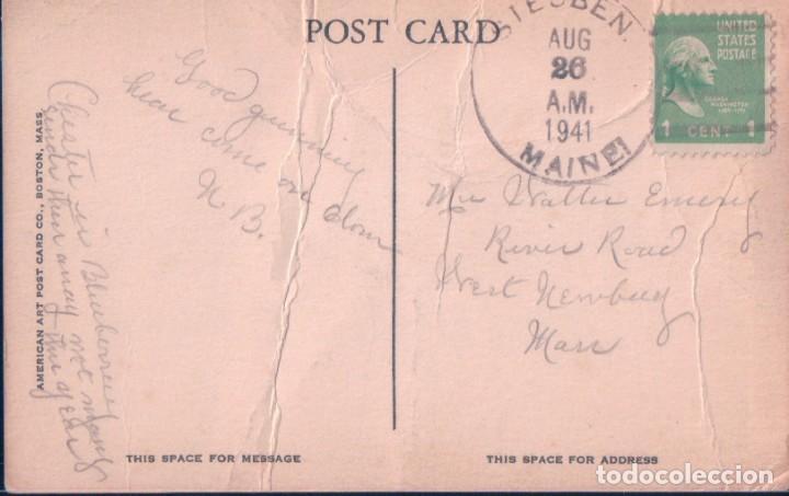 Postales: POSTAL BULL MOOSE IN THE MAINE WOODS - AMERICAN ART POST CARD - RENO - Foto 2 - 184684117