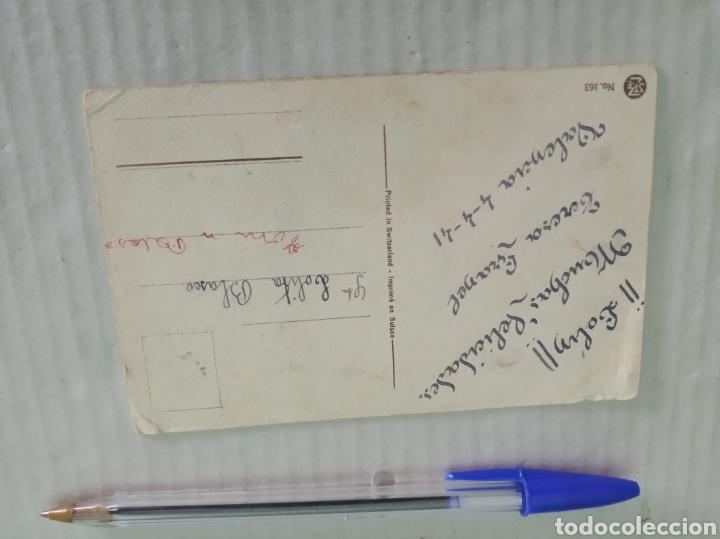 Postales: Postal antigua gatos - Foto 2 - 186213952