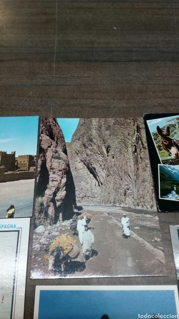 Postales: 8 Postales Burros - Foto 3 - 186430906
