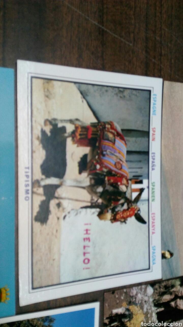 Postales: 8 Postales Burros - Foto 8 - 186430906