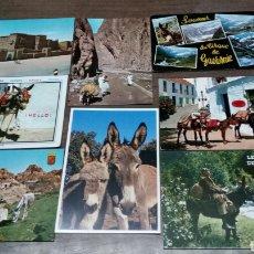 Postales: 8 POSTALES BURROS. Lote 186430906