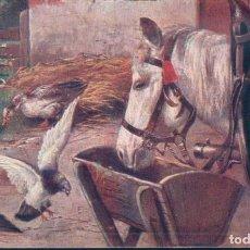 Postales: POSTAL AMERICANA CIRCULADA - CABALLO - PALOMAS Y PATOS EN UNA GRANJA . Lote 188509572