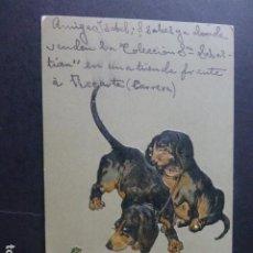 Postales: PERROS CON RANA POSTAL EN RELIEVE CROMOLITOGRAFICA. Lote 191279891