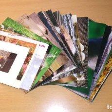 Postales: LOTE 57 POSTALES GATOS. Lote 191378077