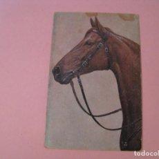 Postales: POSTAL DE CABALLO. SIN DATOS.. Lote 191503887