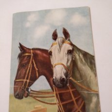 Postales: ANTIGUA POSTAL CABALLOS T.S.N. SERIE 1772 (6DESS.). Lote 192509722