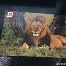 Postales: POSTAL DE EL RINCON SAFARI PARK- LA DE LA FOTO VER TODAS MIS POSTALES. Lote 194272693