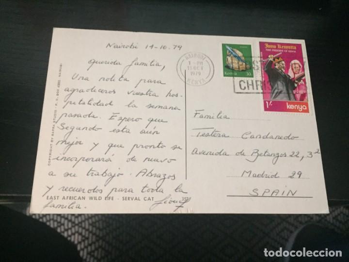 Postales: POSTAL DE FAUNA DE KENYA - LA DE LA FOTO VER TODAS MIS POSTALES - Foto 2 - 194273051