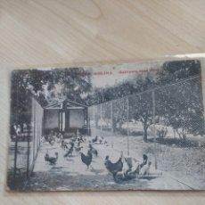Postales: POSTAL TORRE MELINA. GALLINERO RAZA PRAT. NO CIRCULADA.. Lote 194287492