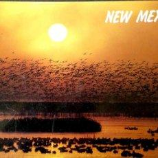Postales: NUEVO MÉXICO. AVES MIGRATORIAS. NUEVA. COLOR. Lote 194663291