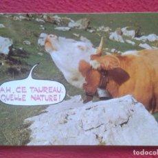 Postales: POSTAL POST CARD COW COWS VACHE VACHES VACAS VACA IMPRIMÉ EN SUISSE AH CE TAUREAU QUÉLLE NATURE TORO. Lote 195100946