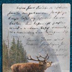 Postales: BONITA POSTAL DE 1903. Lote 196978798