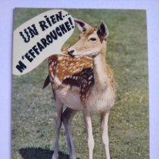 Postales: POSTAL FRANCIA ANIMALES HUMORISTICOS MACON. Lote 197517451