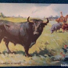 Postales: POSTAL DE PRINCIPIOS DEL SIGLO XX. Lote 197943685