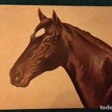 Postales: POSTAL DE PRINCIPIOS DEL SIGLO XX. Lote 197943885