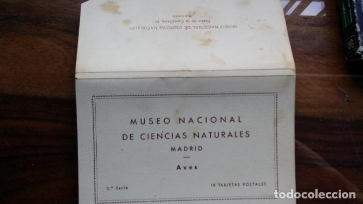 LIBRO 10 POSTALES, MUSEO NACIONAL DE CIENCIAS NATURALES (MADRID) AVES 2ª SERIE - JOSE Mª BENEDITO (Postales - Postales Temáticas - Animales)