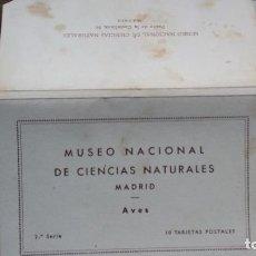 Postais: LIBRO 10 POSTALES, MUSEO NACIONAL DE CIENCIAS NATURALES (MADRID) AVES 2ª SERIE - JOSE Mª BENEDITO. Lote 198202772