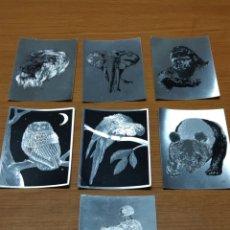 Postales: PRECIOSO LOTE 7 POSTALES METALIZADAS ANIMALES CECILE CURTIS F J WARREN POST CARS DUFES ENGLAND. Lote 198806866