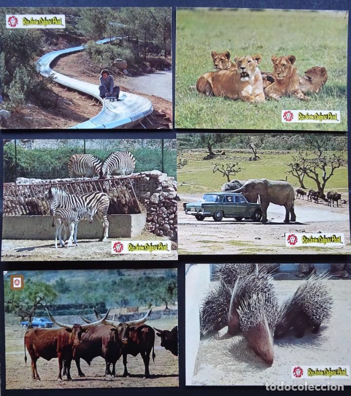 6 POSTALES DE RIO LEÓN SAFARI, ALBINYANA, TARRAGONA. POSTALES SIN CIRCULAR DEL AÑO 1979 (Postales - Postales Temáticas - Animales)