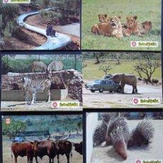 Postales: 6 POSTALES DE RIO LEÓN SAFARI, ALBINYANA, TARRAGONA. POSTALES SIN CIRCULAR DEL AÑO 1979. Lote 202468476