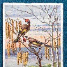 Postales: BONITA POSTAL DE 1909. Lote 202537591