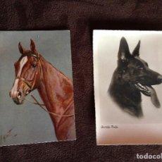 Postales: 2 POSTALES CABALLO, EDICIONES STEHLI Nº 150 Y FOTO POSTAL PERRO,HEIMKUNST,Nº 235. Lote 203290043
