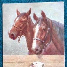 Postales: BONITA POSTAL DE 1907. Lote 204152106
