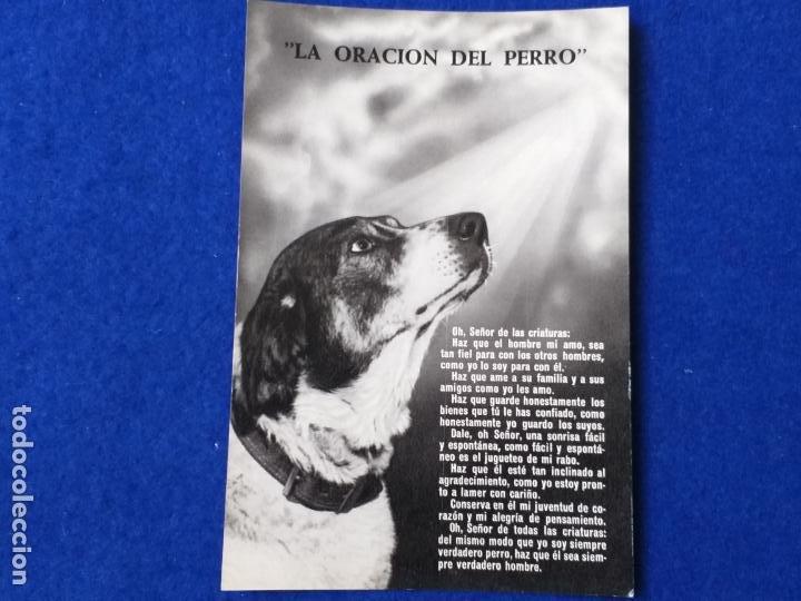 POSTAL - LA ORACIÓN DEL PERRO. FOURNIER. VITORIA. AÑO 1960 (Postales - Postales Temáticas - Animales)