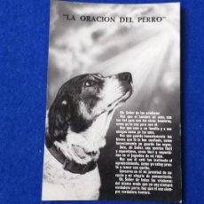 Postales: POSTAL - LA ORACIÓN DEL PERRO. FOURNIER. VITORIA. AÑO 1960. Lote 204278311
