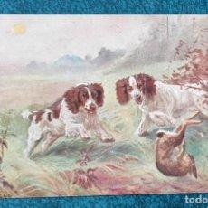 Postales: BONITA POSTAL DE 1907. Lote 204393723