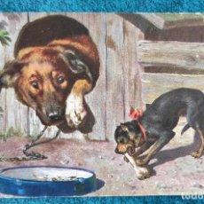 Postales: BONITA POSTAL DE 1909. Lote 204394170