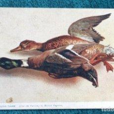 Postales: BONITA POSTAL DE 1905. Lote 204645685