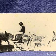 Postales: TARJETA POSTAL FOTOGRAFICA SEÑOR PASEANDO EN BURRO MANADA SOUVENIR FERRANIA NO ESCRITA NO CIRCULADA. Lote 205830337