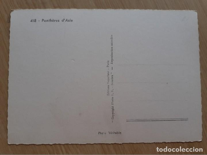 Postales: TARJETA POSTAL - FRANCIA - PANTHERS ASIA - Foto 2 - 206328081