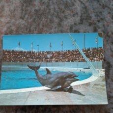 Postales: SAFARI PARK VIRGEL ALICANTE COSTABLANCA FAUNA EDICIONES FERNANDO VALENCIA. Lote 206871198