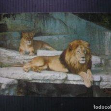 Postales: BARCELONA-ZOO-LEONES.. Lote 207047868
