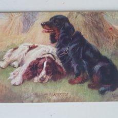 Postales: POSTAL TUCK'S POST CARD LONDON. Lote 209056101