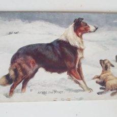 Postales: POSTAL TUCK'S POST CARD LONDON. Lote 209056387