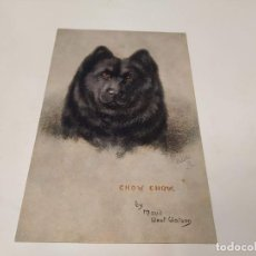 Postales: POSTAL SKETCHES OF DOGGIES - CHOW CHOW. Lote 209127997