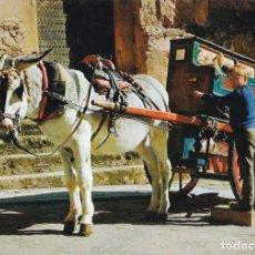 Postales: POSTAL DE BURRO CON ORGANILLO. Lote 210118022