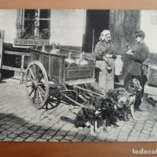 Postales: POSTAL BELGICA BELGIQUE ANIMALES PERROS LECHEROS BRUXELLES LAITIERE FLAMANDE PERFECTA CONSERVACION. Lote 210218166