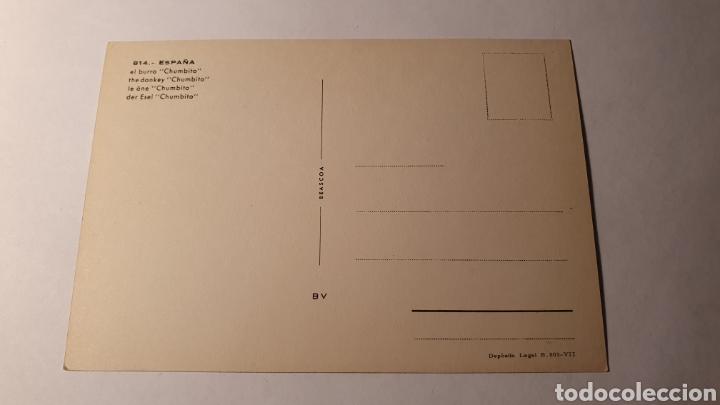 Postales: EL BURRO / POSTAL VINTAGE/ SIN CIRCULAR /( REF.B.11) - Foto 2 - 210455772