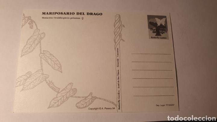 Postales: MARIPOSARIO DEL DRAGO/ SIN CIRCULAR/ (REF.B.16) - Foto 2 - 210465085