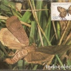 Postales: PORTUGAL & MAXI, INSECTOS DE LAS AZORES, HIPPARCHIA AZORINA , LISBOA 1985 (38). Lote 211436156