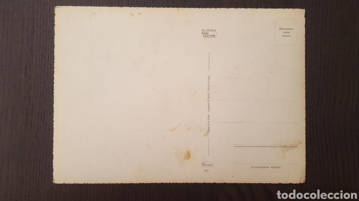 Postales: Lote tres postales antiguas de perros y gatos - Gran tamaño - 14,5 x 21 cm - Foto 6 - 213395821