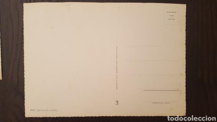 Postales: Lote tres postales antiguas de perros y gatos - Gran tamaño - 14,5 x 21 cm - Foto 7 - 213395821