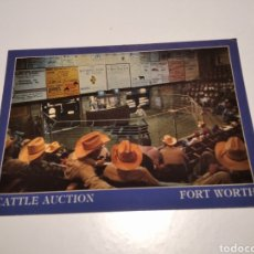 Postales: POSTAL CATTLE AUCTION FORT WORTH, TEXAS. Lote 220527716