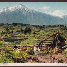 Postales: TENERIFE. CIRCULADA 1979.. Lote 221702215