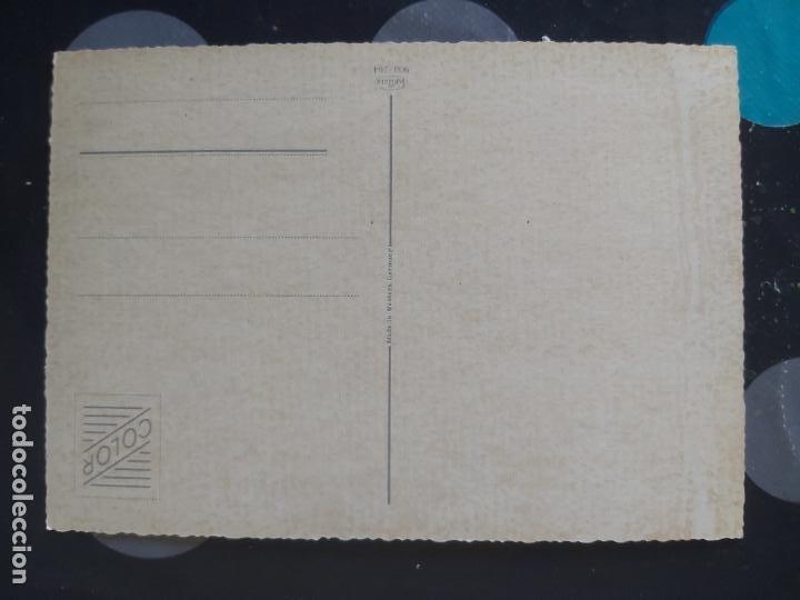 Postales: POSTAL DE GATITOS - Foto 2 - 221815323