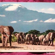 Postales: ELEFANTES TANZANIA CIRCULADA. Lote 221849453